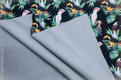 Softshell linnud ja lehed